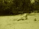 Сонечная ванна Das Sandbad 1907