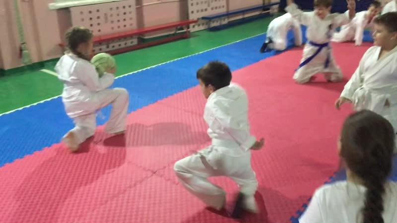 Играем в вышибалу в стиле Айкидо | 合気道 | Aikido