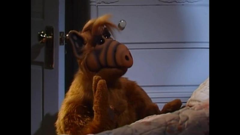 Alf Quote Season 2 Episode 26_Мукулатура