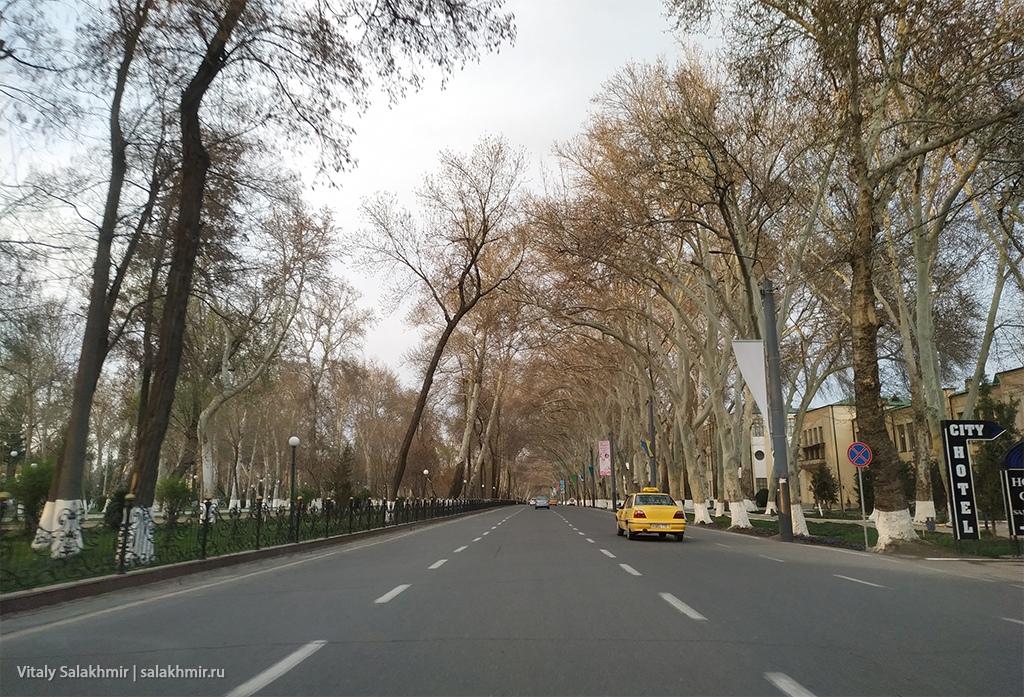 Университетский бульвар, Узбекистан, Самарканд 2019