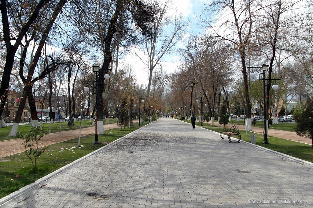 Аллея университетского бульвара, Узбекистан, Самарканд 2019