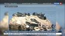Новости на Россия 24 • Роспотребнадзор может разрешить охоту на байкальских нерп