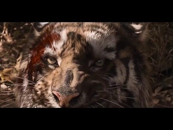 Драконы и тигр. Клип. BTS Not today