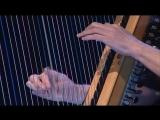 Alan Stivel Impro Harpe Live