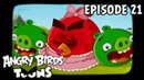 Angry Birds Toons Hypno Pigs S1 Ep21