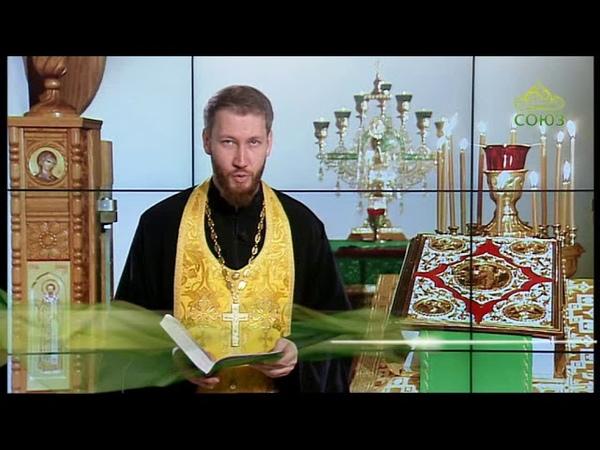 Евангелие от Матфея. Глава 4, ст. 18–23 с рассуждением Иеромонаха Пимена (Шевченко)
