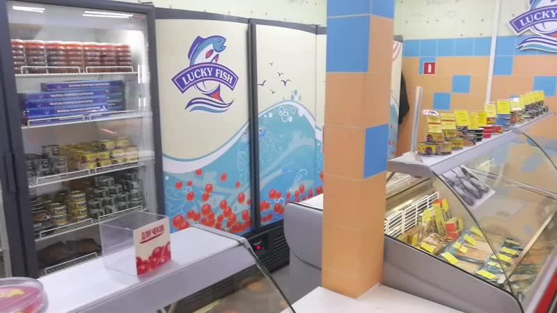 Магазин Икра и Рыба расположенный по адресу м Девяткино Привокзальная площадь д 3