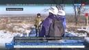Новости на Россия 24 Наблюдатели ОБСЕ осмотрели место разведения украинских силовиков и ЛНР