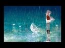 Tiếng mưa rơi -sound of raindrops-雨の音が落ちる-Nguyễn Công Trình