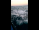 Крым Море волнуется