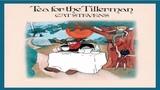 Cat Stevens - Tea For The Tillerman Full (Video +Audio tracks)
