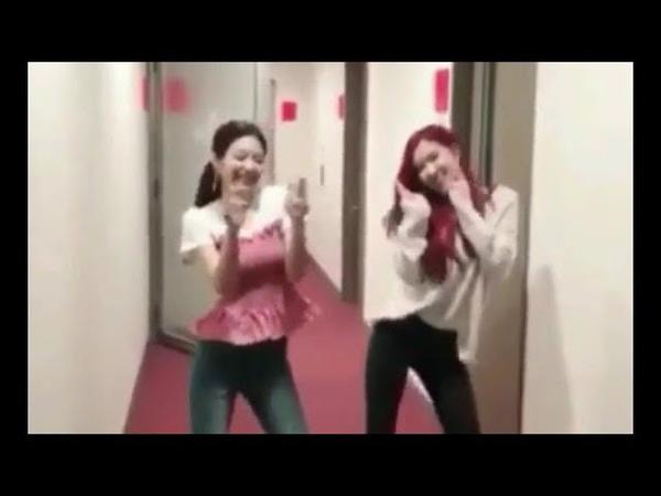 Blackpink's Jennie Rosé dance 'Ddu-du Ddu-du' [CUTE VERSION]