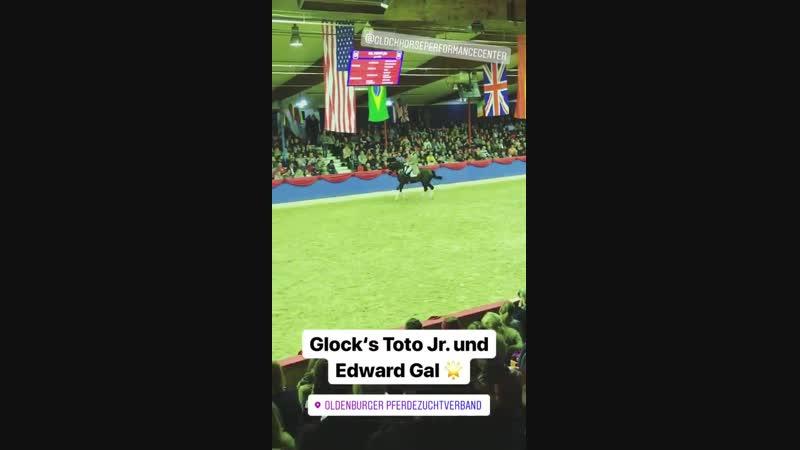 VECHTA Oldenburger Althengstparade 2018 Edward Gal Glock's Toto JR 7
