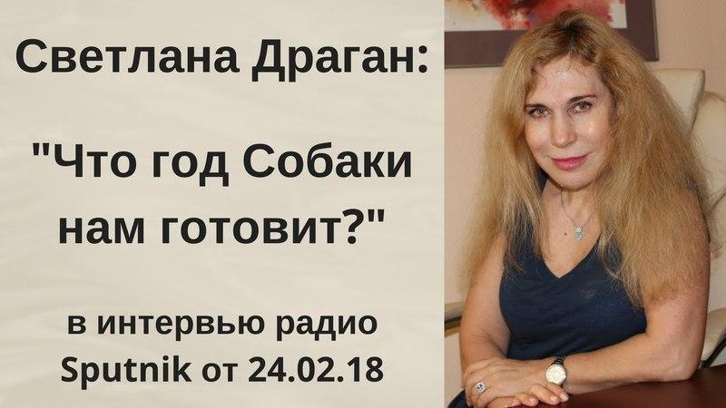 Светлана Драган: Что год Собаки (2018 год) нам готовит в интервью радио Sputnik от 24.02.18