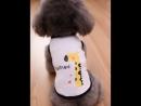 Pet vest dog t shirt