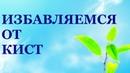 КИСТА. Все причины появления кисты. Лечение кисты без операции. Николай Пейчев.