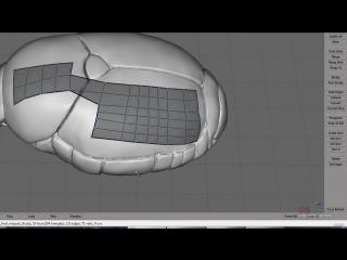 4 урок - Продвинутый моделинг в 3dsMax и Mudbox (Японский Жук)