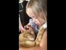 Колыбельная для котика трогательно