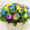 Btcflowers.ru