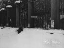 Блокада Ленинграда, зима 1941