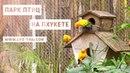 Съездили в парк птиц на Пхукете - место для детей и взрослых