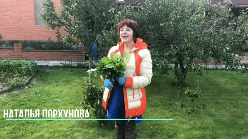 Как это сделано 9 Наталья Порхунова Фермеры Ешь Деревенское