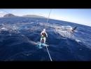 На Маврикии ничего нового ветер, волны и киты