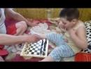 Юный шахматист Жданик