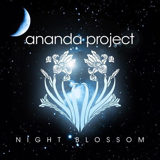 Ananda Project альбом Night Blossom