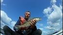 Поймал несколько рыб на джиг г.Козьмодемьянск!