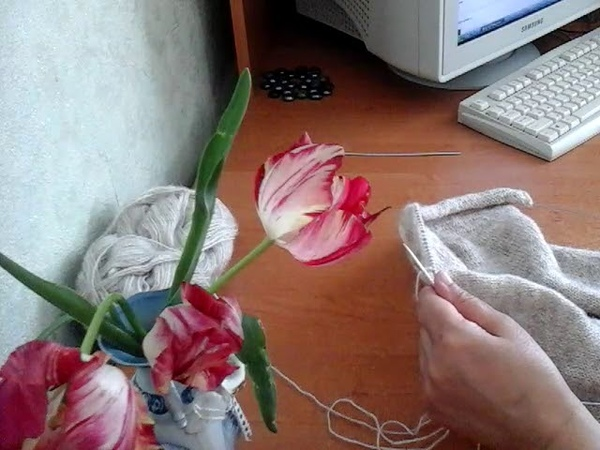 TAG Семья и вязание TAG Family and knitting