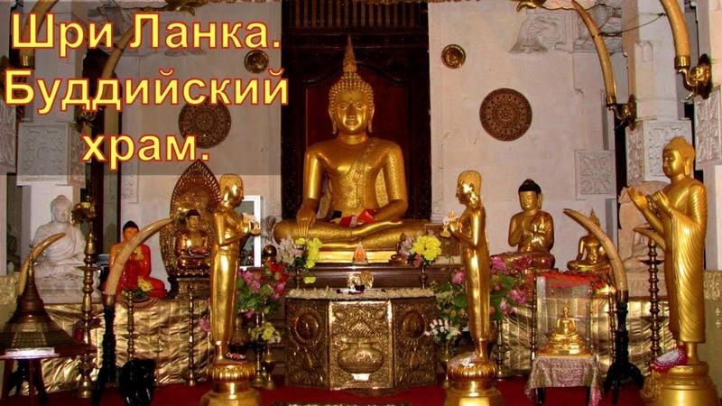 Шри Ланка. Буддийский храм.