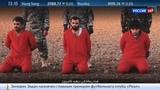 Новости на Россия 24 Британка-католичка отдала четырехлетнего сына в палачи ИГ
