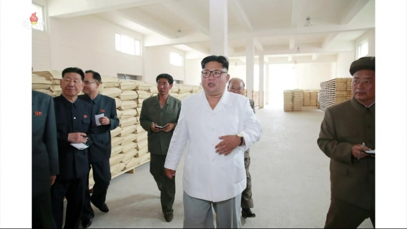 경애하는 최고령도자 김정은동지께서 삼지연감자가루생산공장을 현지지도하시였다