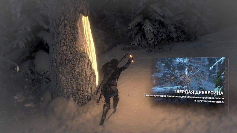 Прохождение Rise of the Tomb Raider - Сибирская глушь 3