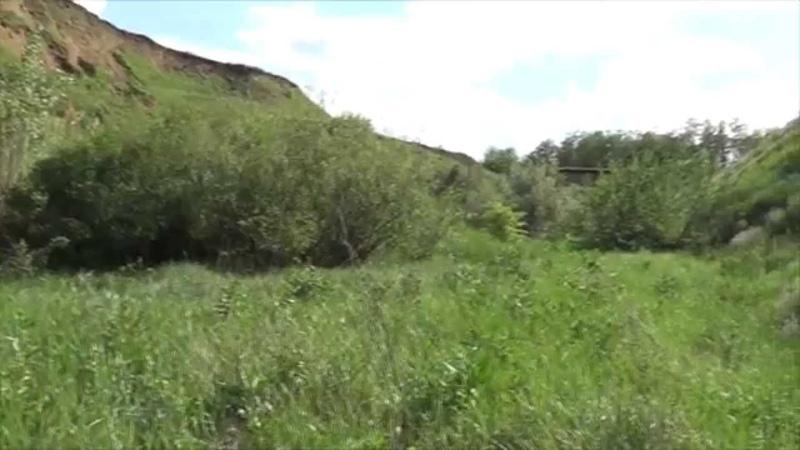По слідам ЧУПАКАБРИ, Білокуракине, 28.05.2012