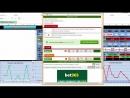 Обзор Программы BETPROFI V2 1