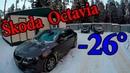 Skoda Octavia A7 Дизель мороз 26