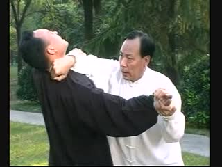 Чжан Чжицзюнь. 32 техники циньна в Чэньши тайцзицюань.