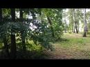Лазертаг теперь в Петровске