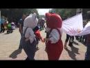 Зажигательные танцы от Мишки и Кошки - символов Челябинского Универмага Детский Мир