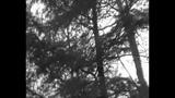 Leger des Heils + von Wolfen APOSTASY LDH neu MCD Bannkreuz