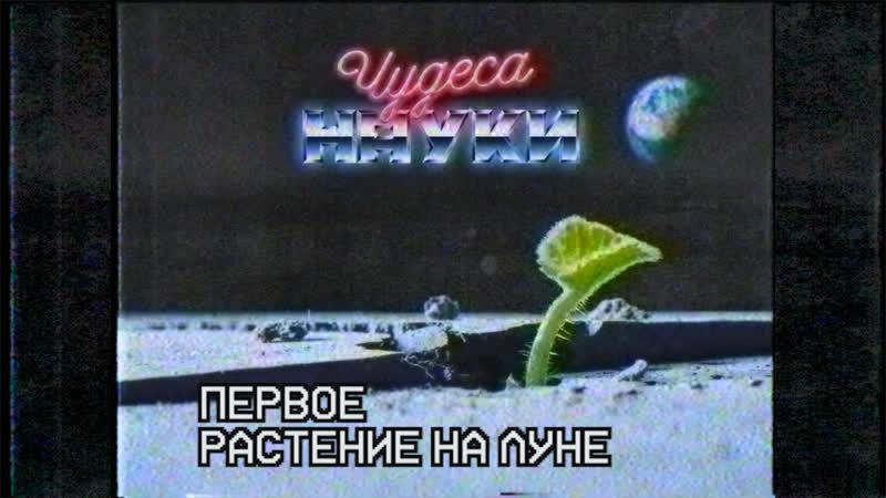 Первое растение на луне. Но ему суждено умереть