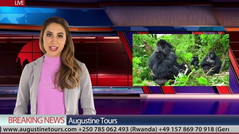 Best value for money holiday tour safari to Africa Burundi Rwanda Uganda Kenya Tanzania.