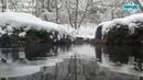 Антонио Вивальди - Времена года. Зима и Лето · coub, коуб