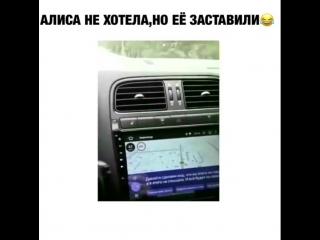+18)) Приколы над Алисой в навигаторе)))