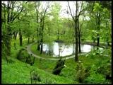 Johann Sebastian Bach - BWV 905 - Fantasia and Fugue in D minor - Chris Breemer