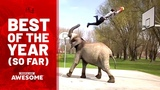 People are Awesome - Best Videos of the Year (So Far) Feat. Imagine Dragons &amp Kygo