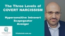 The Three Levels of Covert Narcissism Hypersensitive Introvert Scapegoater and Avenger