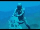 Сказка на ночь, часть 2!😝👀🦈 Ааам 💤 ⠀ ⠀ ⠀ фруктыморя море морепродукты рыба доставкарыбы доставкарыбыспб Repost from nat